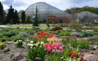 Botanické zahrady v Čr