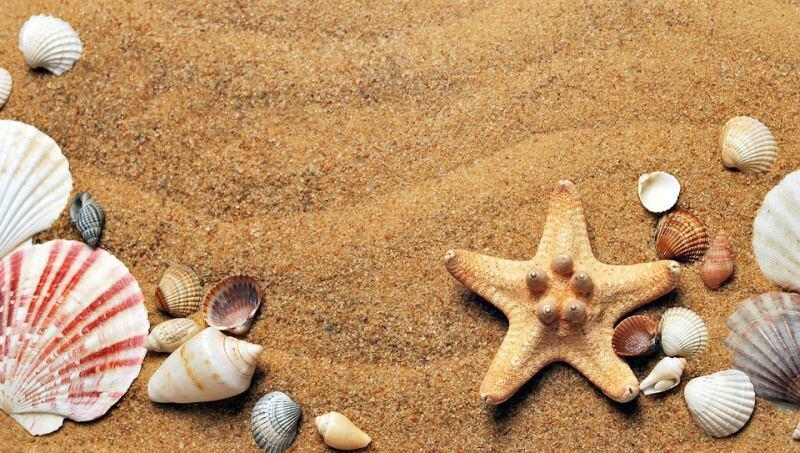dovolená moře děti
