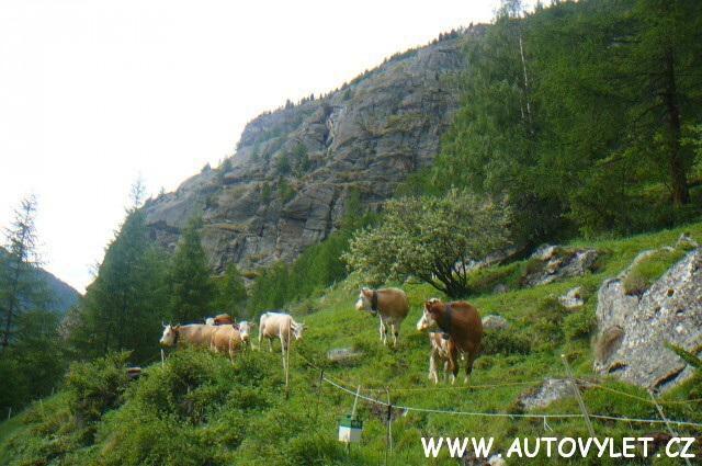 Letní dovolená ve Švýcarsku autobusem