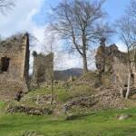 Zřícenina hradu Rýzmburk u Oseka