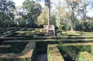 Labyrintárium Loučeň - tisové bludiště