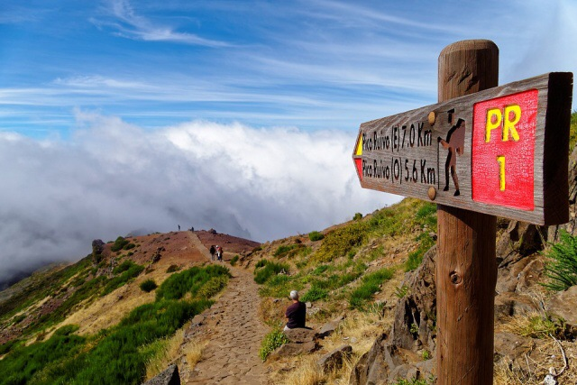 Madeira hory