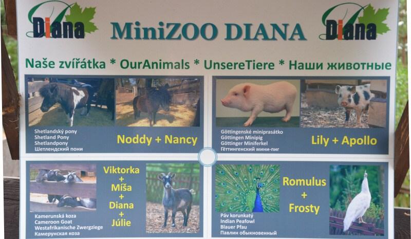 Minizoo Diana Karlovy Vary