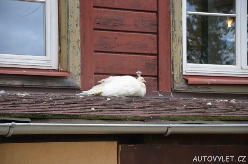 Minizoo Diana Karlovy Vary 6