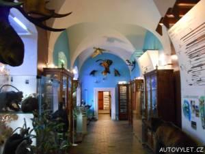 muzeum česká lípa 2
