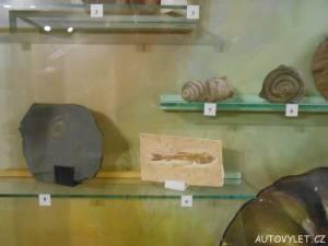 muzeum česká lípa 4