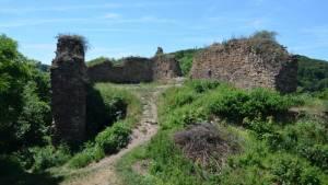 Opárno zřícenina hradu