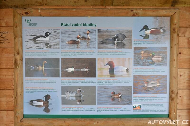Ornitologická pozorovatelna v Zahrádkách u České Lípy 4