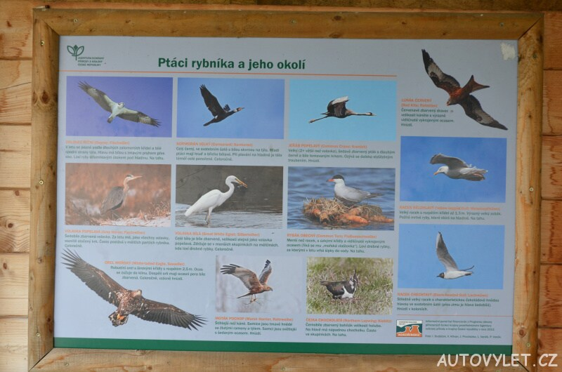 Ornitologická pozorovatelna v Zahrádkách u České Lípy 5