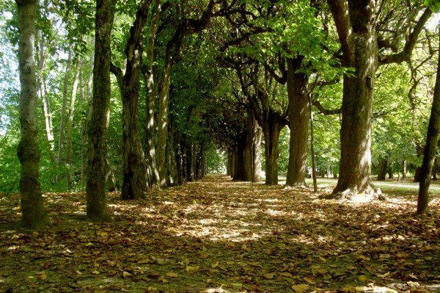 Park Vízky - Vizovice