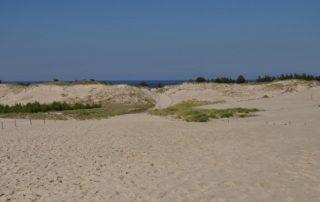 písečné duny polská sahara