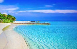pláž exotika