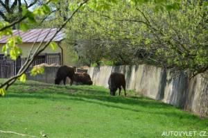 Podkrušnohorský zoopark Chomutov 03