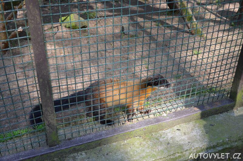 Podkrušnohorský zoopark Chomutov 06