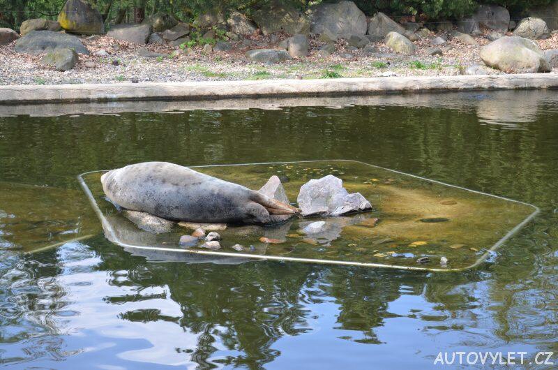 Podkrušnohorský zoopark Chomutov 13
