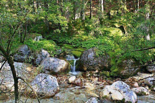 slovinsko08