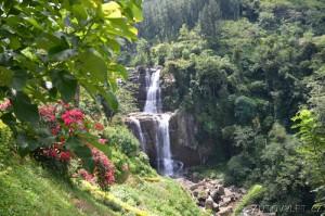 Srí Lanka dovolená 07