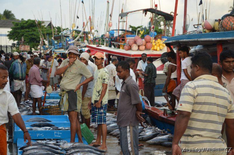 Srí Lanka dovolená 10