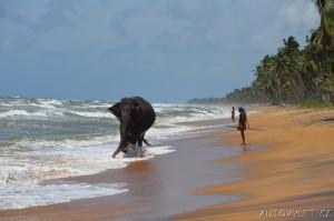 Srí Lanka dovolená 13