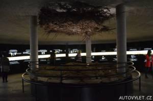 Stezka korunami stromů Krkonoše - podzemí