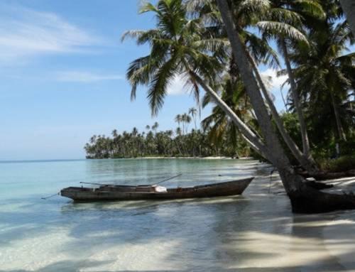 Dobrovolnictví na Sumatře: cestovatelský sen si může splnit každý