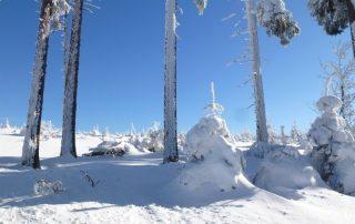 Šumava sníh zima