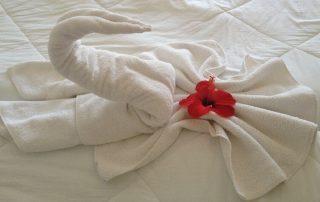 Sun Connect Aqua Resort Djerba - recenze hotelu v Tunisku