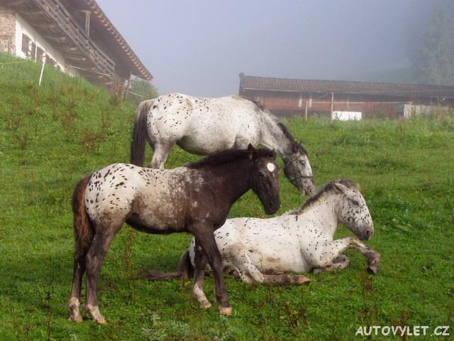 Tennengebirge Rakousko Alpy 7
