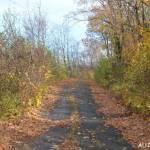 Na podzim je cesta příjemná