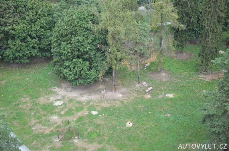 Výhled z rozhledny v olomoucké zoo 3