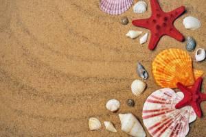 Zájezdy k moři v červnu