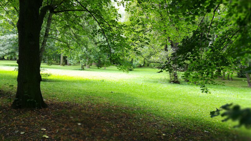 Zámecká zahrada Teplice 1