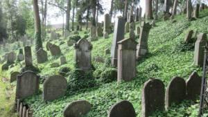 Židovský hřbitov Třebíč