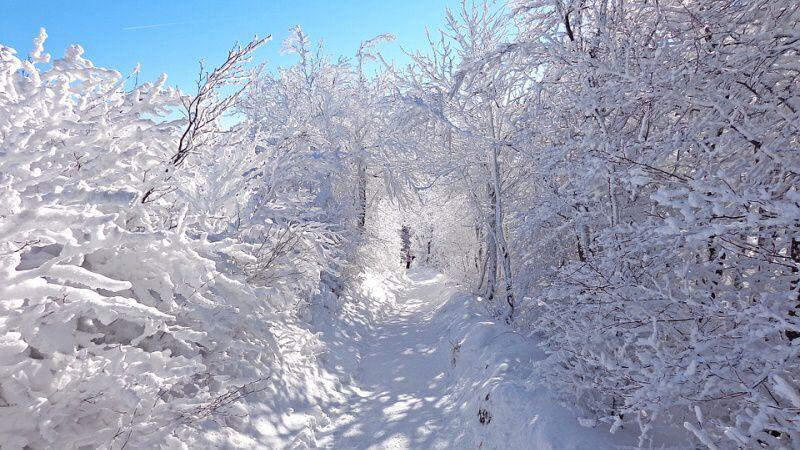 Zimní stezka