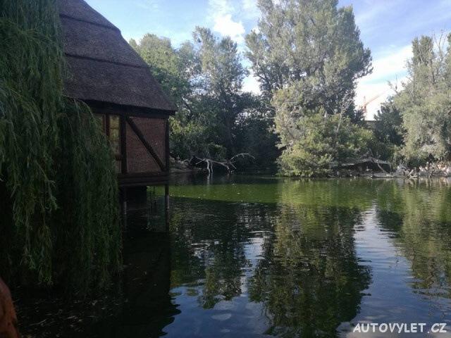 Zoo Budapešť Maďarsko 1