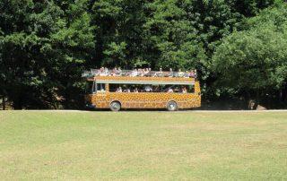 zoo dvůr králové safari bus