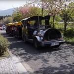 Zoologická zahrada Ústí nad Labem video