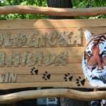V Zoo Hodonín uvidíte i žraloky