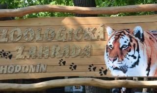 zoologická zahrada hodonín