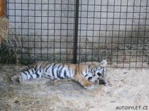 zoopark berousek doksy 2